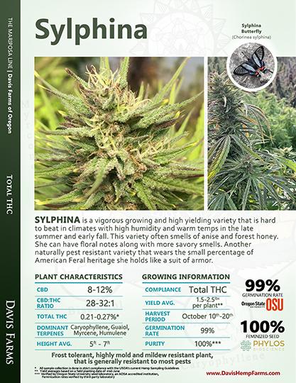 Available data for hemp variety Sylphina