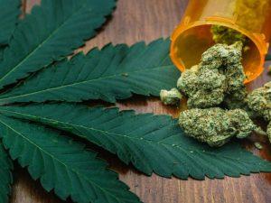 Marijuana Legalization And Dispensing