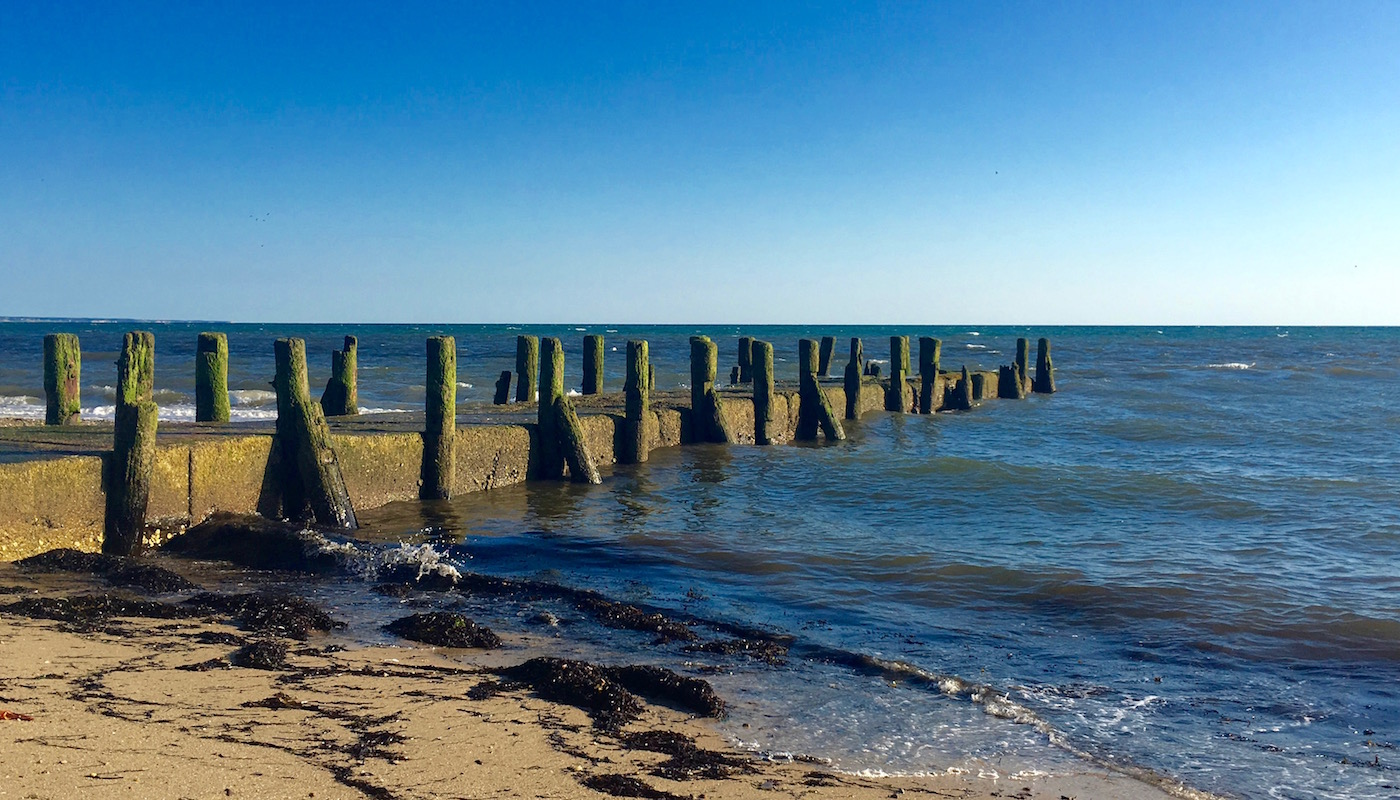 Wharf: Cape Cod Center for Sustainability