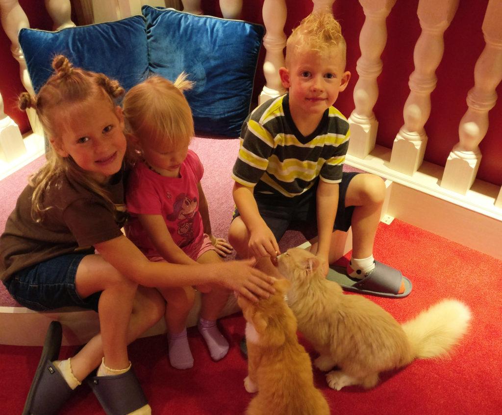 three kids petting two cats