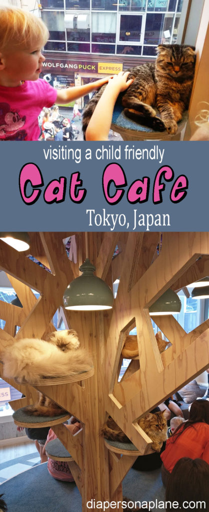 Cat Cafe in Tokyo Pin
