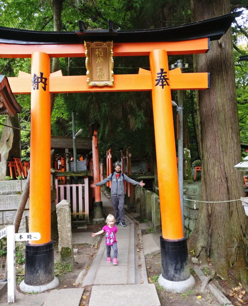 Torii gates hiking in Kyoto