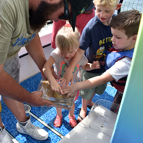Time and Tide Tours, Cape Canaveral, Florida, Banana River, Dolphins in the wild, creating family memories, family travel, traveling with kids