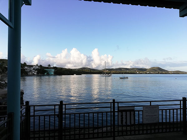 Puerto Rico Island of Vieques