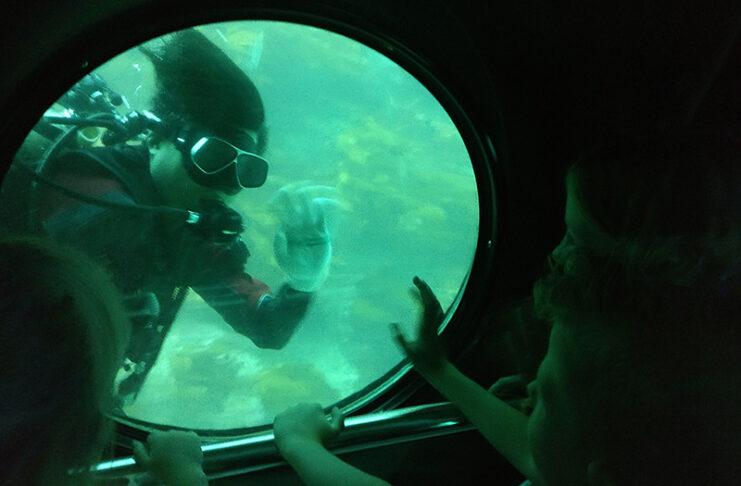 Exploring Submarines on Jeju Island with Kids
