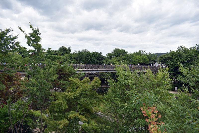 Freedom Bridge at DMZ South Korea