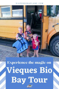 What Happens When you Witness Magic on Vieques Bio Bay Tour