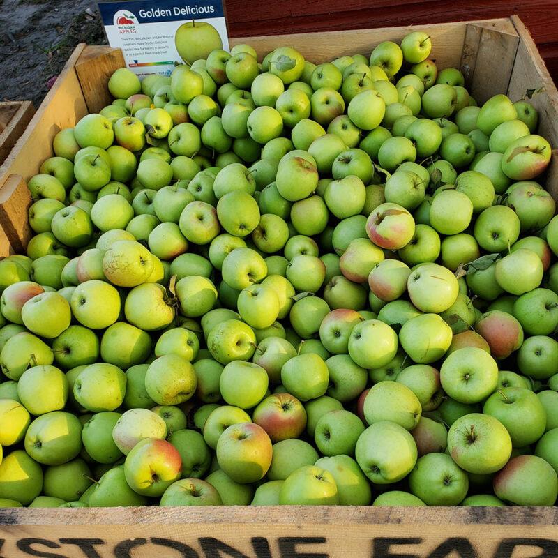 BrixStone Farms Golden Delicious Apples