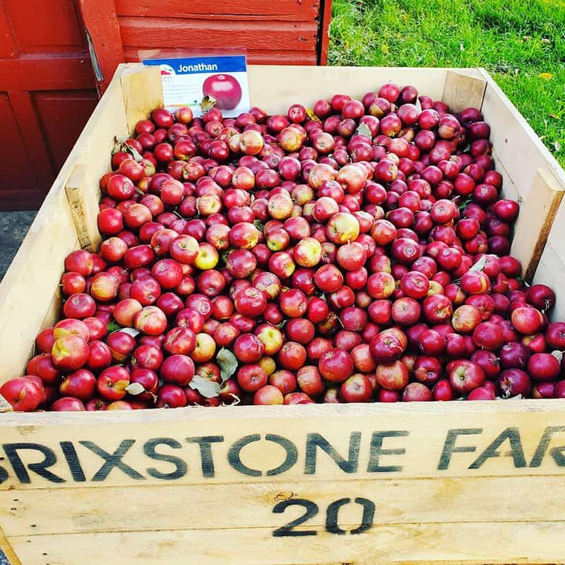 BrixStone Farms Jonathan Apples