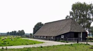 the-netherlands-179294_1280