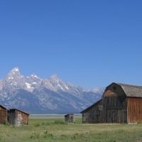 5 Ideas for Becoming a Successful Rancher