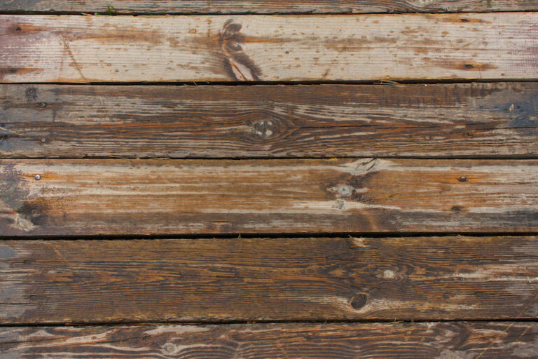 texture of untreated wood in natural conditions; kiln dried wood