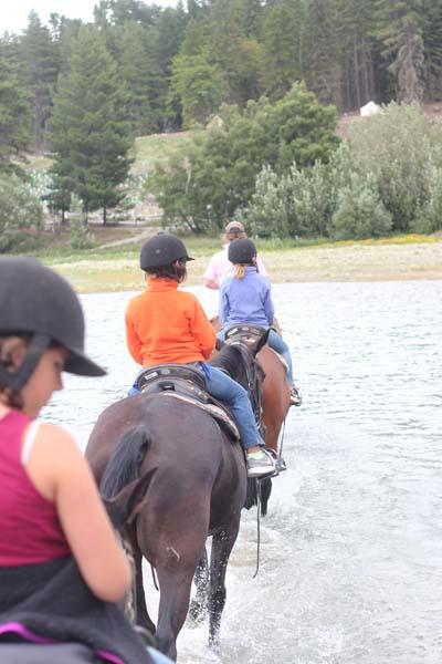 Horseback ride at Lake Tekapo