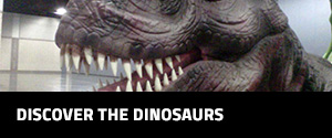 event-gallery-side-bar-dinosaurs