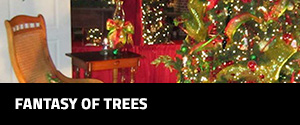event-gallery-side-bar-fantasy-of-trees