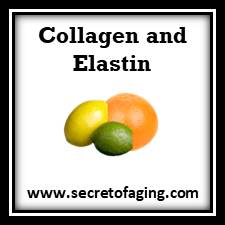 Collagen and Elastin Skincare by Secret of Aging