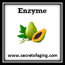 Enzyme Skincare by Secret of Aging