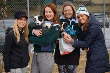 Underdogs Supporting Underdogs: Raising Brand Awareness And Combating Animal Cruelty