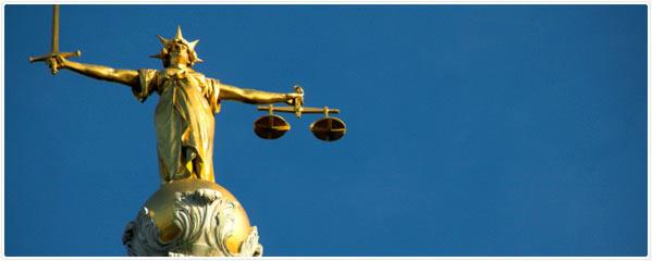 8_Nursing_Home_Litigation_2