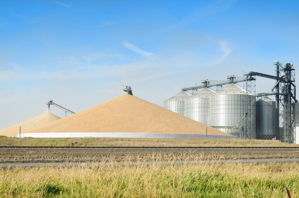 Steve Kluemper Corn Pile