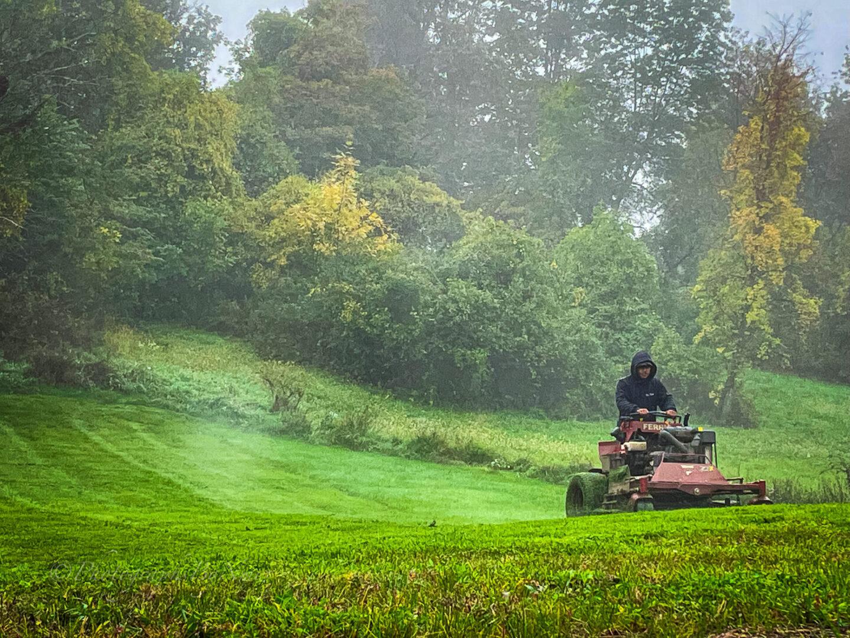 Commercial and Estate Landscape Management