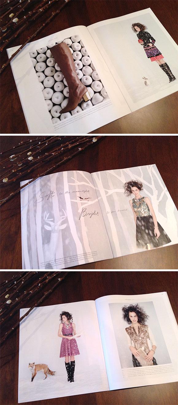 Inspired by Anthropologie's November 2012 Catalog