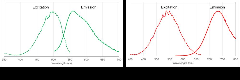 Excitation and emission spectra of PlasMem Bright series