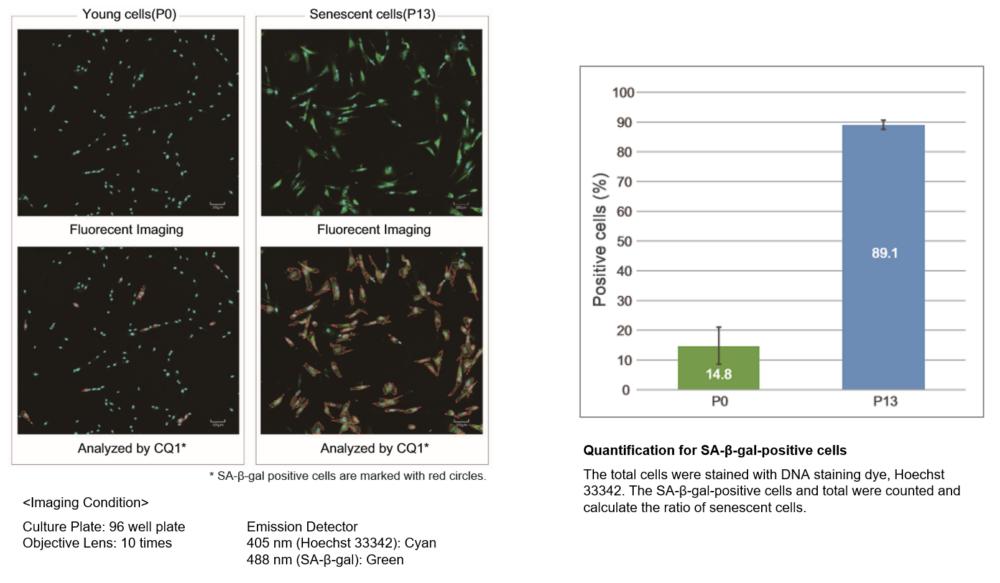 Quantification with confocal quantitative image cytometer
