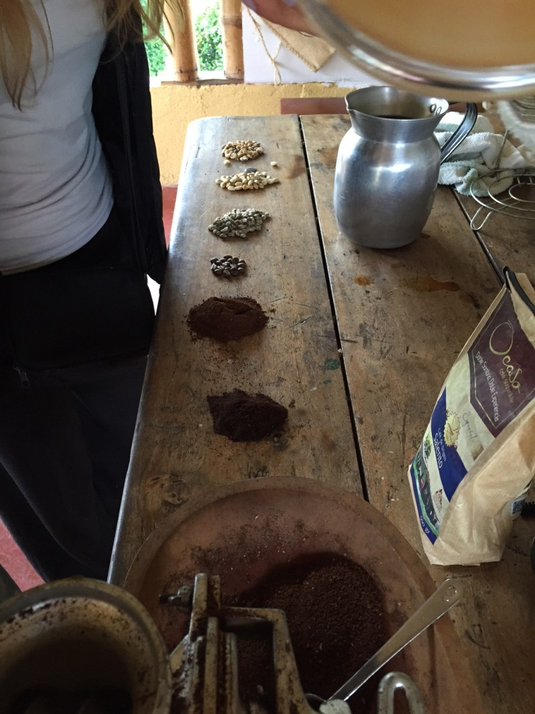 from bean to grind- notice the one closest to the right is darker, and therefore, of lower quality