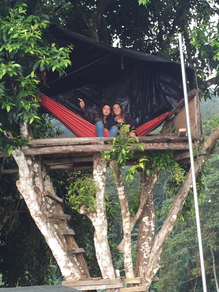Guests in a hammock in a treehouse at Casa Elemento