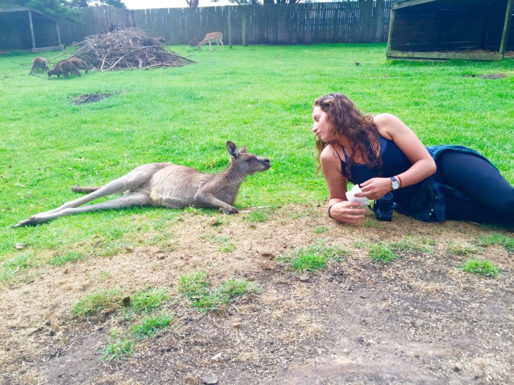Woman Wanders, Rebecca Bellan, making friends with a kangaroo in Australia