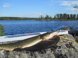 Fishing in Trinidad Colorado