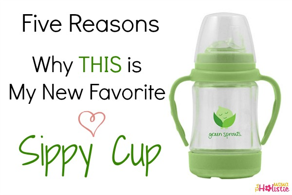 favorite sippy cup