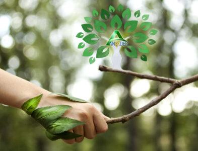 Ekolojik İşbirliği