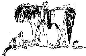 Girl grooming fuzzy horse