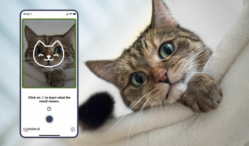 tably app screenshot