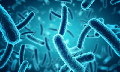 scientists discover bacteria that makes contaminated water safe to drink