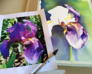 Iris in Progress
