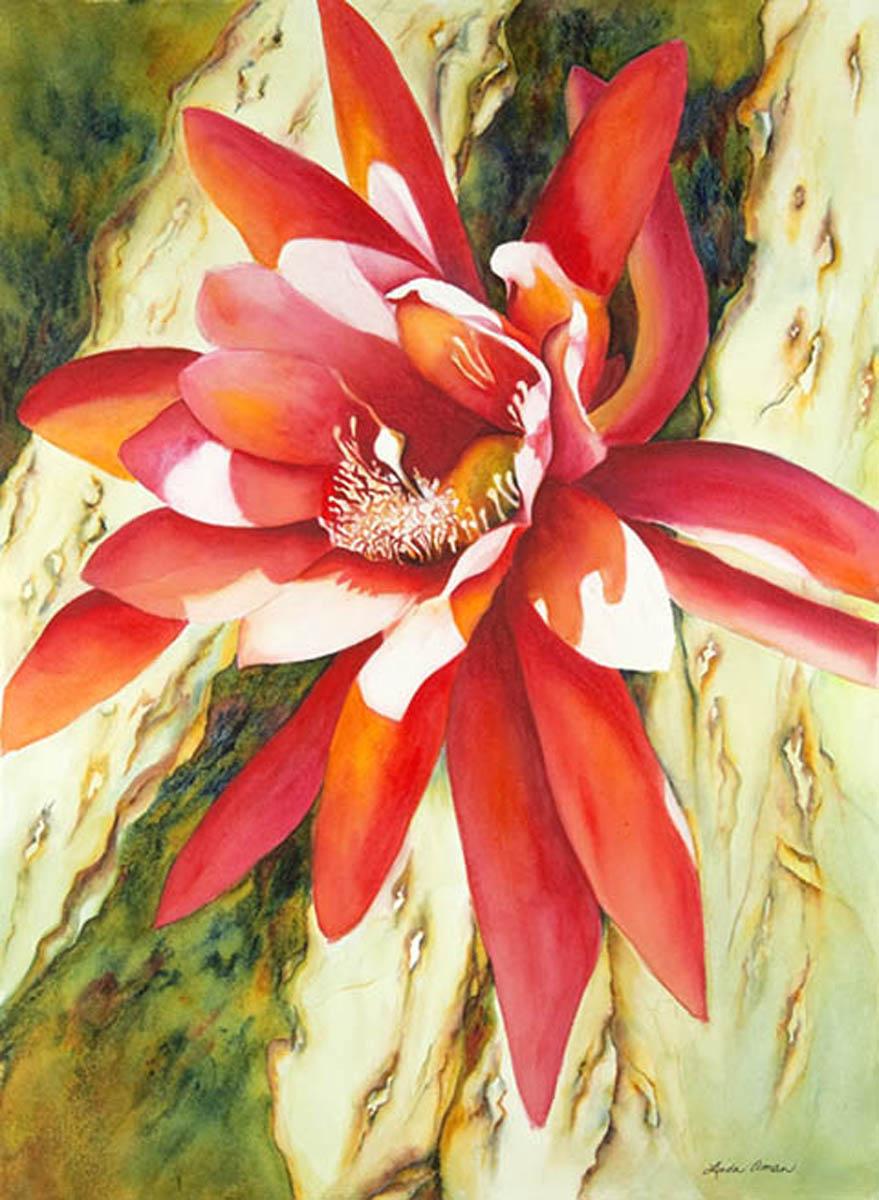 """Cactus Blossom – 40"""" x 32"""" Original Watercolor :: NFS"""