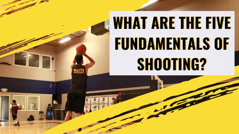 five fundamentals of shooting