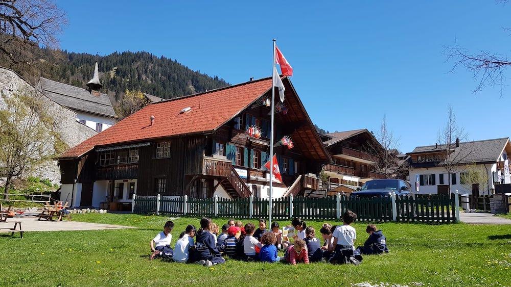 FREE SWISS SCHOOLS SETUP EXPERT CONSULTANT