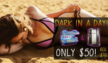 Dark in a Day - Save $20!