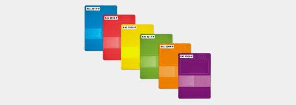 RAL P2 Plastic Card