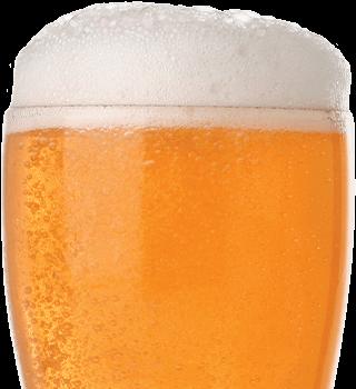 beer-cut