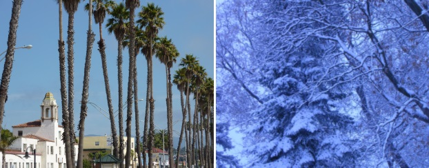 California and minnesota, Mayo, south and north