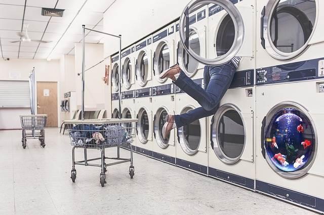 laundry-fish