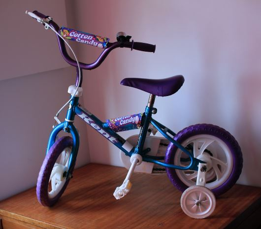 how to teach a kid to ride a bike, training wheels, Monkey Pickles, Daily Peel
