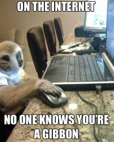 Funny Monkey Meme, Monkey Images, Funny Pictures