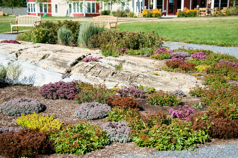 Alpine-Garden