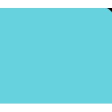 Dog Grooming, Taylor MI